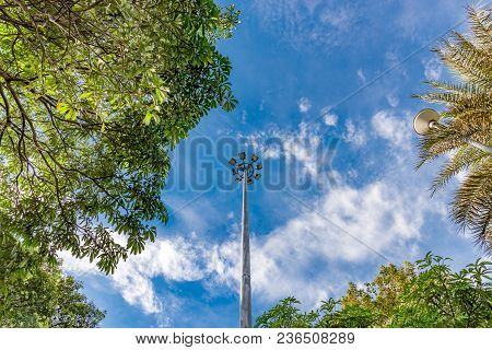 Light Bulb On The Pole. Electric Neon Lamp. Among The Blue Sky Cloud And Brunch Of Tree In Public Ga