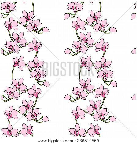 Seamless Pink Orchid Flowers Pattern. Hand Drawn Ink Stock Vector Illustration, Design Element For W
