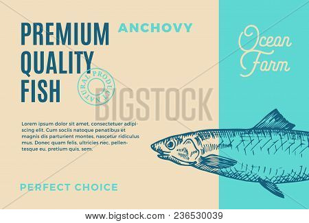 Premium Quality Anchovy. Abstract Vector Fish Packaging Design Or Label. Modern Typography And Hand