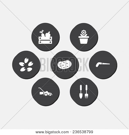 Set Of 7 Horticulture Icons Set. Collection Of Garden Instruments, Grass-cutter, Seed And Other Elem