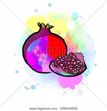 Colored Drawing Of Pomegranate. Fresh Design Of Colorful Fruits Made In Watercolor Style. Modern Mar