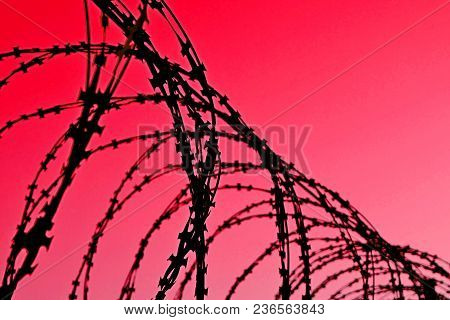 Barbed Wire Fence With Sharp Spikes On A Red Background