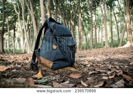 Backpack For Travel. Backpack On Fallen Yellow Foliage In The Forest. Blue Bag. Autumn Forest, Autum
