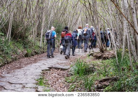 Nemi, Italy - April 15, 2018: Group Of Hikers Proceed In Single File Through A Forest Path.