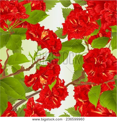 Seamless Texture Hibiscus Red Tropical Flowers  Nature Background Vintage  Vector Botanical Illustra