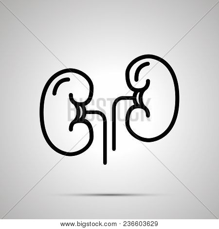 Simple Black Human Kidneys Icon With With Shadow On Gray