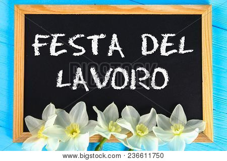 Chalkboard With The Text In Italian: Labor Day. White Flowers Of Daffodils On A Blue Wooden Table. L