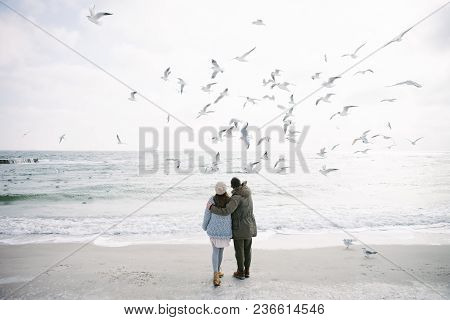 Rear View Of Couple Embracing On Winter Sea Shore And Looking At Seagulls