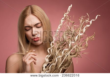 Portrait Of Upset Woman Holding Bundle Of Dried Grass And Looking At Her Damaged Tips Of Locks. Isol