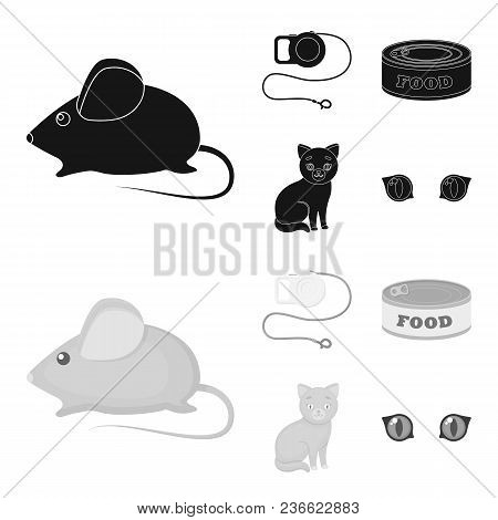 Mouse, Pet Leash, Pet Food, Kitten. Cat Set Collection Icons In Black, Monochrom Style Vector Symbol