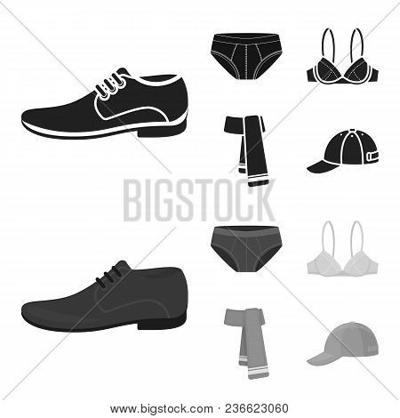 Male Shoes, Bra, Panties, Scarf, Leather. Clothing Set Collection Icons In Black, Monochrom Style Ve