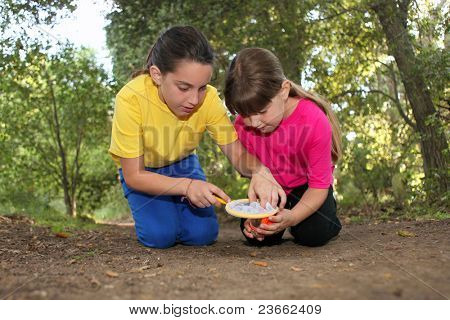 Sibling Girls Hunting for Insects While Camping Outdoors