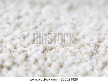 Neutral Plain Wool Carpet Rug Texture Closeup