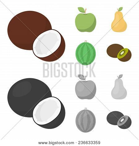 Coconut, Apple, Pear, Watermelon.fruits Set Collection Icons In Cartoon, Monochrome Style Vector Sym