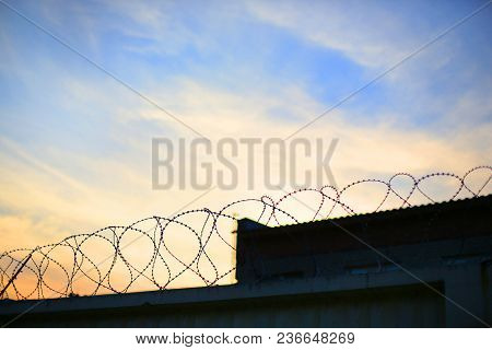 Barbed Wire In A Spiral Against The Background Of Sunset Or Dawn, Lack Of Freedom, Isolation, Limita