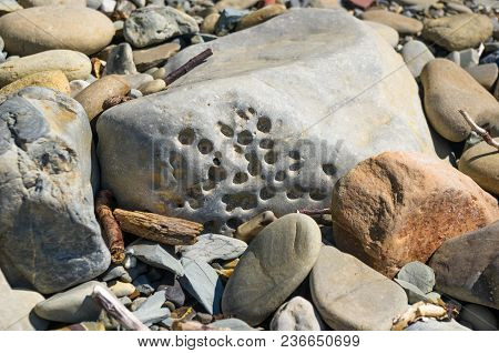 Boulders And Colorful Pebbles On The Beach On A Warm Summer Day