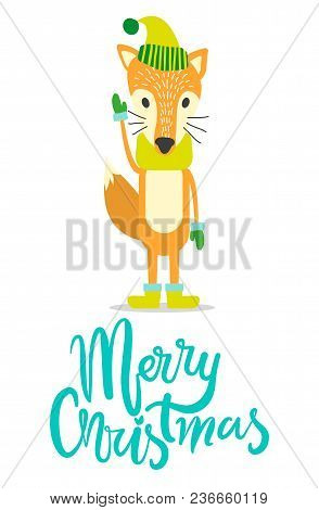 Merry Christmas Greeting Card With Red Fox In Warm Hat, Cozy Scarf, Wool Mittens And Comfortable Win
