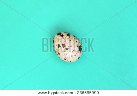 One Quail Egg On A Light Green Surface, Top View, Empty Place For Text. Minimalism