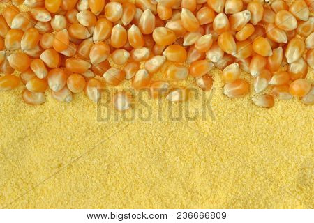 Dry Corn Kernels And Corn Flour Background