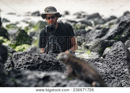 Wildlife photographer and tourist on Galapagos taking photo of Marine Iguana on Tortuga bay beach. Marine iguana is an endemic species iconic to Galapagos Islands wildlife and nature. Animals, Ecuador