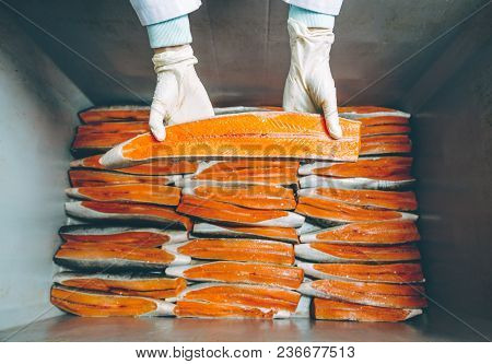 Fish Seafood Factory Industry Production Processing Equipment