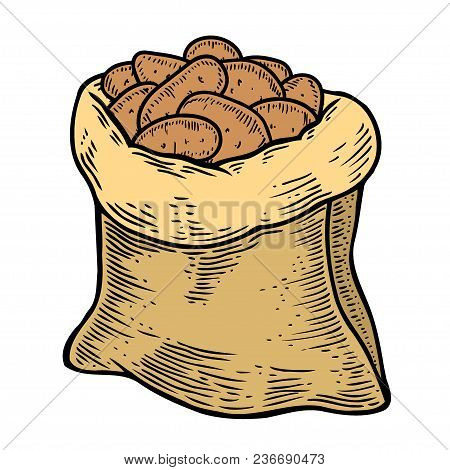 Burlap Sack Full Of Ripe Potato, Hand Drawn, Sketch Style Vector Illustration Isolated On White Back
