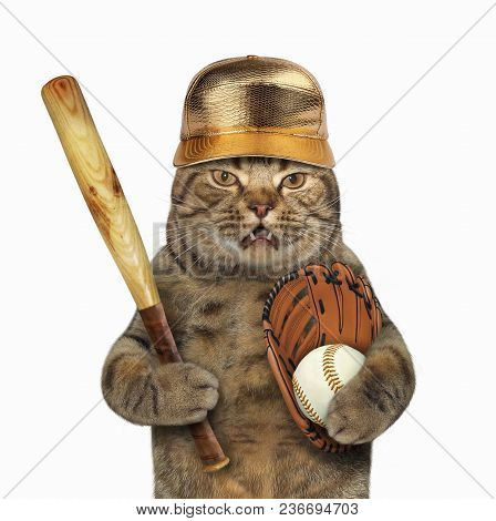 The Cat In A Golden Cap Holds A Baseball Bat, Glove And Ball. White Background.