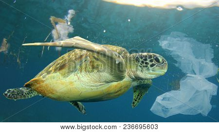 Plastic pollution in ocean environmental problem. Sea Turtle swims through discarded plastic rubbish which it can mistake for jellyfish food poster