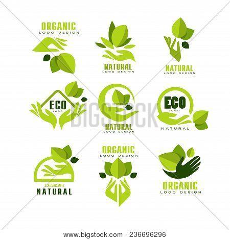 Eco, Organic, Natural Logo Design Set, Premium Quality Product Label, Emblem For Cafe, Packaging, Re