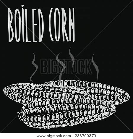 Isolate Boiled Corn Ears With Steam As Chalk On Blackboard. Close Up Clipart In Chalkboard Style. Ha