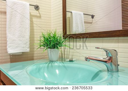 A Modern Toilet With A Washbasin And A Flowerpot For Decoration