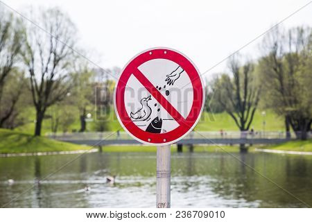 Do Not Feed Ducks And Fish, Lake