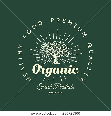 Organic Natural And Healthy Farm Fresh Food Retro Emblem Design Vintage Round Olive Tree Logo