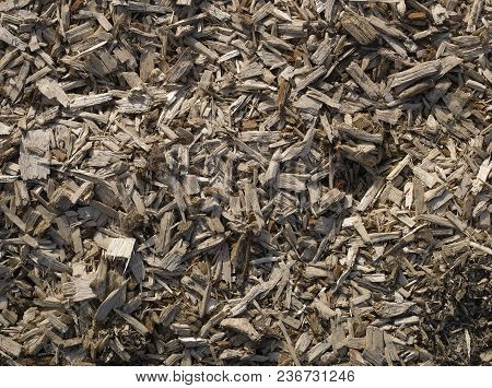 Pile Of Sharp Splinters Of Wood, Above View,