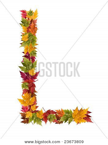 The letter L made from autumn maple tree leaves