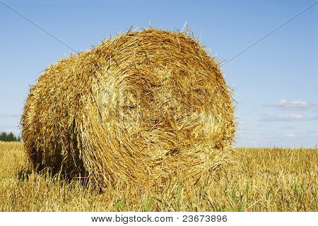 Straw Bale And Sky