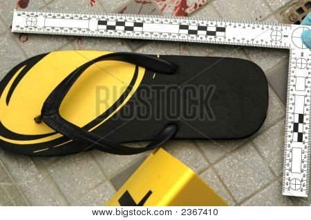 Shoe With Scale