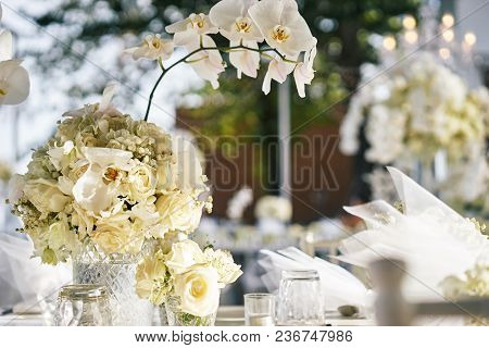 The Wedding Reception Dinner Venue Setup With The White Flower Theme, A Bunch Of White Roses, Flower