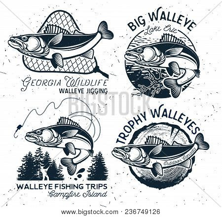 Vintage Walleye Fishing Emblems And Labels. Vector Illustration