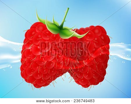 Tasty Ripe Raspberry In Clean Water. Realistic Style. Vector Illustration.