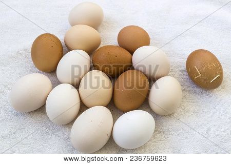 Real Natural Organic Village Eggs, Healthy Village Eggs, White And Yellow Village Eggs On Black Grou