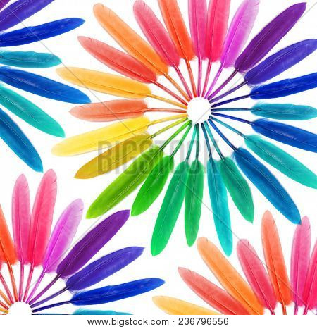 Colored feathers on a white background. Rainbow. Fashion.