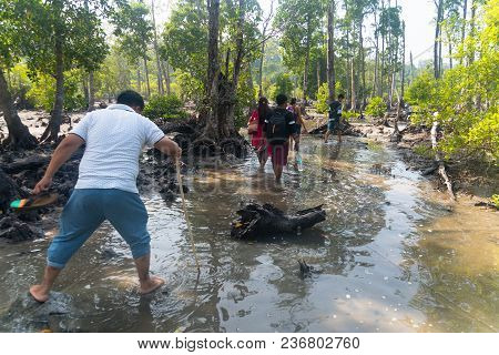 Group Of Happy, Young Friends Walking In Forest And Enjoying A Good Autumn Day. Mangroves On A Tropi