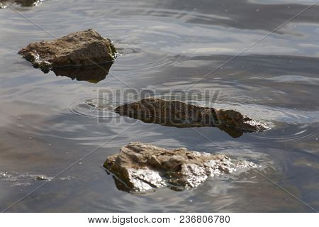 Rocks In The Waters Of The Mississippi River With Subtle Reflections