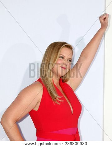 LOS ANGELES - APR 17:  Amy Schumer at the