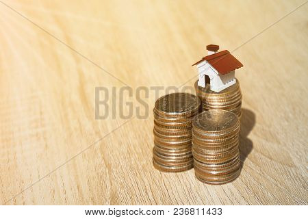 House And Coins Bar On Sunlight Background Present Compare The Savings With Tree Planting. Or Saving