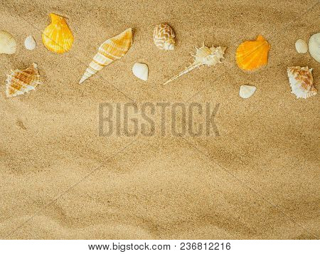 Summer Holiday And Vacation Concept. Seashells On Sand. Sea Summer Vacation Background With Space Fo