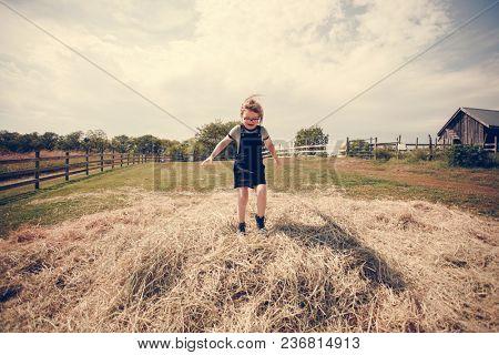 Little girl having fun in a farm