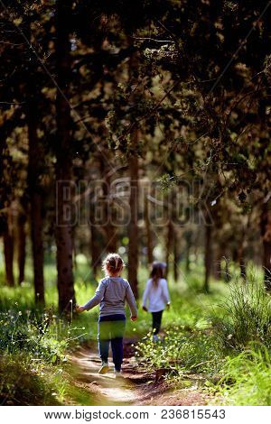 Two Sisters Run Through The Forest Holding Hands. Summer Sunny Day And Girls In Light Dresses. Beaut