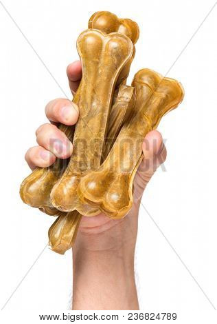 Male hand holding Dog chew bone food - pet accessories for eat, isolated on white background with copy space